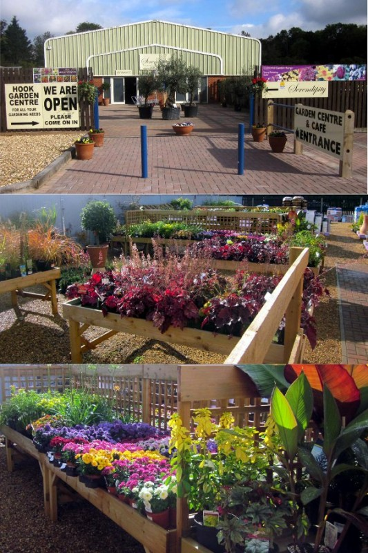 Serendipity at Hook Garden Centre Garden Centres in Hook Hampshire